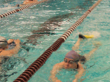 UMAMA might be just right for you! (That's UMASS Aquatic Masters ofcourse!)