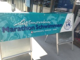 Lake Zurich Marathon Swim 2014 – All you ever wanted to know, PartOne