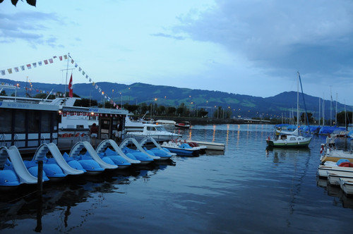 Marathon-Swim 2014, Switzerland 2 – 002